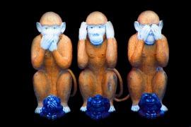 monkey-557586_1920