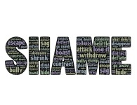 shame-652499_1920