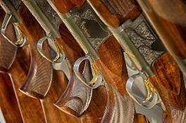 guns-467710_640
